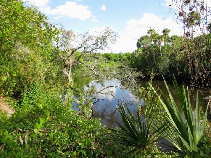 !!!!st-sebastian-river-view-@-cbcp