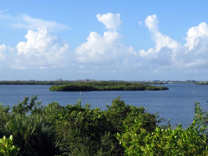 !!!!pelican-island